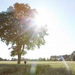 Hochzeitsfotografie-CharmedWall-Minden
